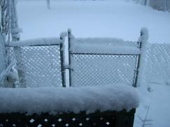 "OVER 7"" SNOW"