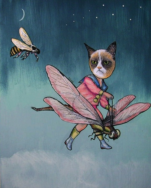 """The Pursuit of Grumpy Cat"""