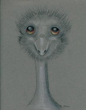 """I Emu"" by Sherry Key a.k.a. Skey"