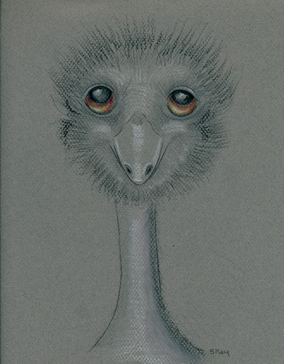 """I Emu"" by Sherry Key a.k.a. Skey"